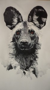 Wild Dogs for FB